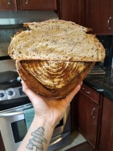 Sourdough boule baked with dried and revived starter