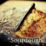 Frustration-Free Sourdough: Unlocking the secrets for home bakers (Free webinar)